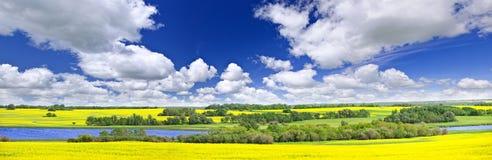 Het panorama van de prairie in Saskatchewan, Canada Stock Foto