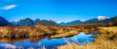 Het panorama van de Sneeuw behandelde Gouden die Orenberg en Randpiek van de dijk van Moeras pitt-Addington in Fraser Valley word stock foto