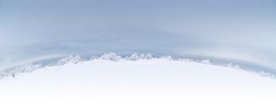Het panorama van de winter royalty-vrije stock fotografie