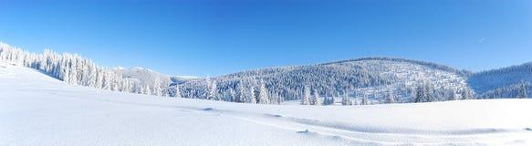 Het panorama van de winter royalty-vrije stock afbeeldingen