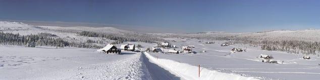 Het panorama van de winter Stock Foto's