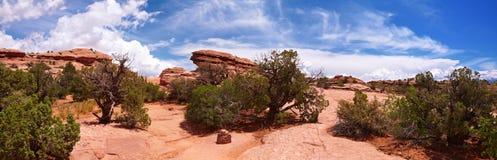 Het panorama van de woestijn stock foto's