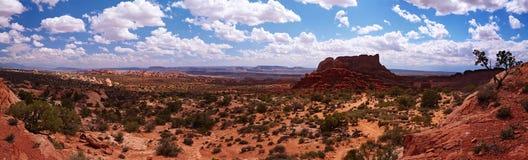 Het panorama van de woestijn royalty-vrije stock afbeelding