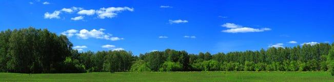 Het panorama van de zomer Royalty-vrije Stock Afbeelding