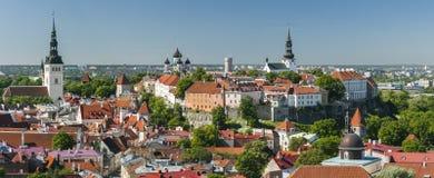 Het panorama van de zomer van de Oude Stad van Tallinn, Estland Stock Afbeelding