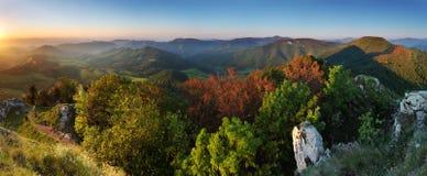 Het panorama van de zomer van Karpatisch royalty-vrije stock afbeelding