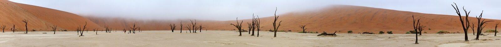 Het panorama van Deadvlei stock afbeelding