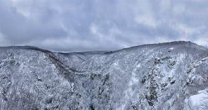 Het panorama van enorm voorspelt Vallei in de Harz-bergen royalty-vrije stock foto