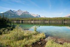 Het panorama van Herbert Lake royalty-vrije stock foto