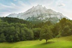 Het Panorama van het berglandschap. Zwitserland Royalty-vrije Stock Foto