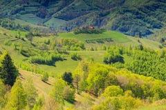Het panorama van het de lentelandschap, heuvels en weide, Holbav, Transsylvanië, Roemenië Royalty-vrije Stock Foto