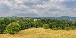 Het panorama van het de zomerlandschap Stock Foto's