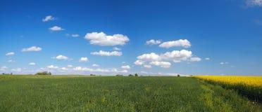 Het panorama van het landschap Stock Foto's
