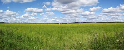 Het panorama van het platteland Stock Afbeeldingen