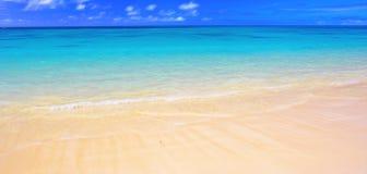 Het panorama van het strand ( Stock Afbeelding