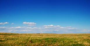 Het panorama van Nosehill Stock Afbeelding