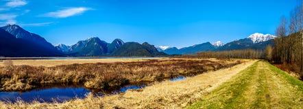 Het panorama van Sneeuw behandelde Gouden die Orenberg en Randpiek van de dijk van Moeras pitt-Addington in Fraser Valley wordt g royalty-vrije stock afbeelding
