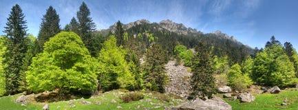 Het panoramische landschap van de berg Stock Foto