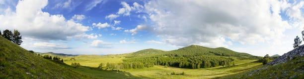 Het panoramische landschap van de bergzomer bomen dichtbij weide en bos op helling in zonsonderganglicht stock afbeeldingen