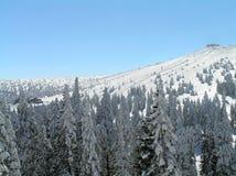 Het paradijs van de ski Stock Fotografie