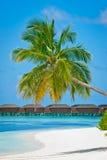 Het paradijs van de vakantie Stock Foto