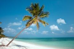 Het Paradijs van het eiland Stock Afbeeldingen