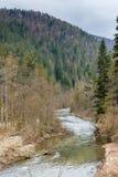 Het paradijs van Slowakije: de riviercanion in het nationale bospark van Slowakije stock afbeeldingen