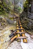 Het paradijs van Slowakije - de de riviercanion van Sucha Biela met toeristenweg Wandelend in de riviercanion, bosbomen aan de ka royalty-vrije stock foto's