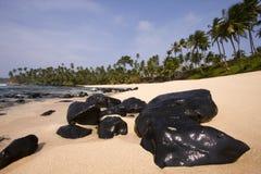 Het paradijslandschap van de zomer Stock Foto