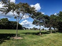 Het park Royalty-vrije Stock Foto
