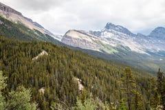 Het Park Alberta Canada van Jasper National van de Sunwaptapas Stock Afbeelding