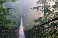 Het Park & de Hangbrug van de Canion van Lynn Stock Afbeeldingen