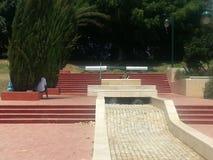Het park in anana van Ra `, Israël Royalty-vrije Stock Foto