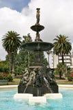 Het park Auckland, Nieuw Zeeland van Albert Stock Foto's