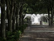 Het Park Charleston South Carolina van de waterkant Stock Fotografie
