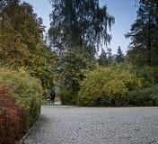 Het park, in de afstand een mens op a cobbled steeg royalty-vrije stock afbeeldingen