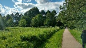 Het park dichtbij rivier in Moskou Stock Foto