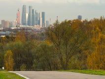 Het park en de stad van Moskou Stock Fotografie