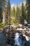 Het Park en de stroomversnelling van Grand Teton stock foto