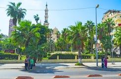 Het park met palmen Royalty-vrije Stock Afbeelding