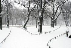 Het park van Alexandriyski Stock Afbeeldingen