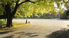 Het park van Autmn Royalty-vrije Stock Foto