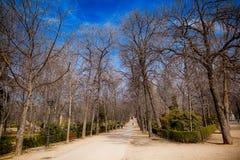 Het Park van Buen Retiro in Madrid Spanje Stock Afbeeldingen