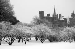 Het park van Bute, Cardiff stock fotografie