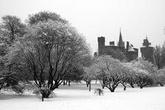 Het park van Bute, Cardiff Royalty-vrije Stock Afbeelding