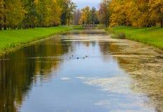Het park van Catherine ` s in Tsarskoe Selo stock foto's