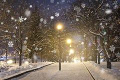Het park van de avondwinter in sneeuwval De tijd van Kerstmis Sneeuwvlokken en lantaarns in nachtpark stock foto's