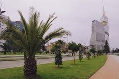 Het Park van de boulevardkust in Batumi, Georgië stock afbeelding