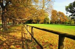 Het park van de daling Royalty-vrije Stock Fotografie