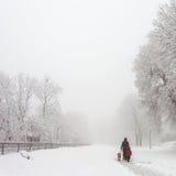 Het park van de de winterstad Royalty-vrije Stock Afbeeldingen